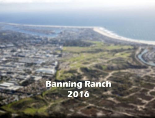 2016 – A New Year from Banning Ranch Conservancy