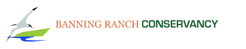 Banning Ranch Conservancy Retina Logo