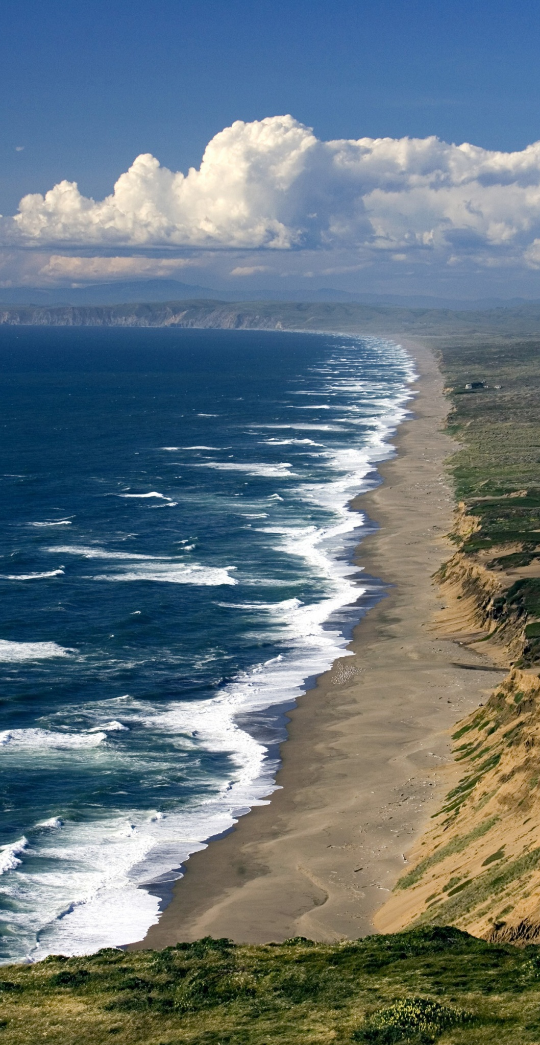 Point-Reyes-WALE-Cover_c